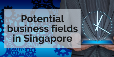 Potential business fields in Singapore